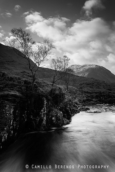 I found this tree just downstream from a waterfall in Glen Etive.