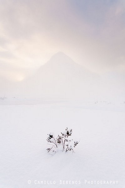 A snowy Glen Coe and another LPOTY reject.