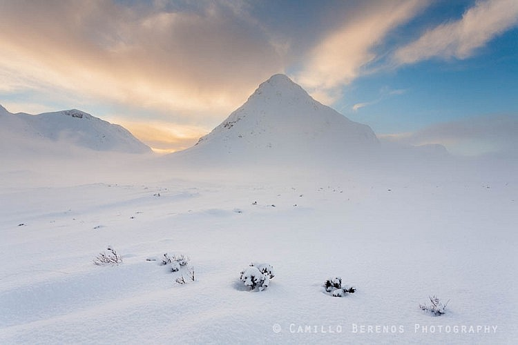 A perfect line of plants piercing through the deep snow cover in fron of the Buachaille Etive Beag, Glen Coe