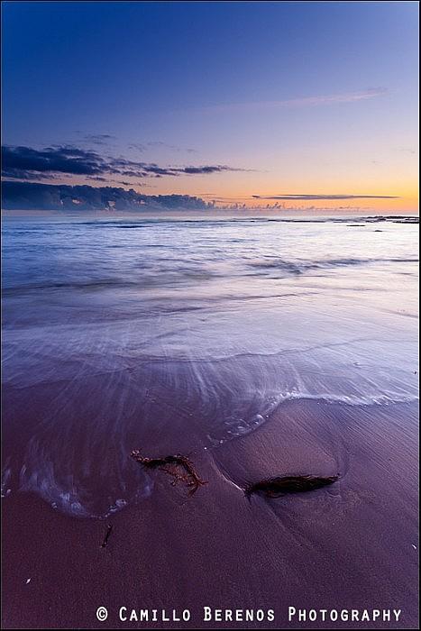 Blue hour at pre-sunrise twilight, Scottish East coast
