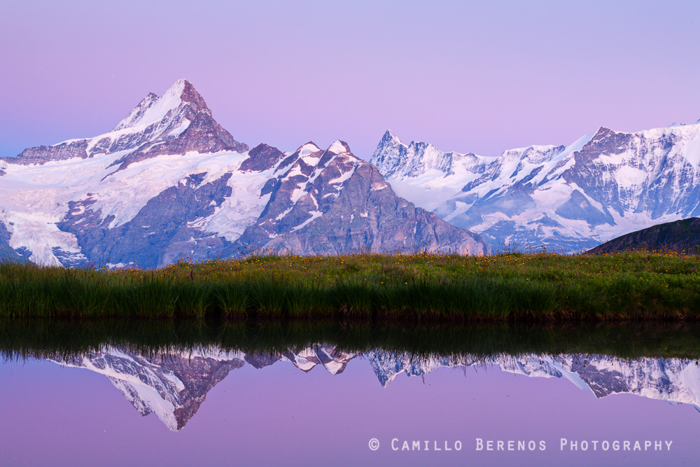 Reflection of the Schreckhorn in the Bachalpsee after sunset. This region around Grindelwald in the Bernese Alps is absolutely spectacular. At night I could hear pieces of the glaciers falling off all the way across the valley.